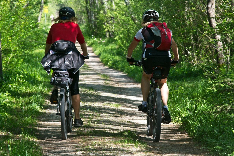 Vélo cycliste sur la véloroute du Bassin minier