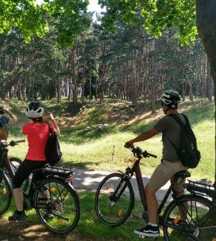 Cyclistes sur le site du Mémorial canadien de Vimy avec les moutons