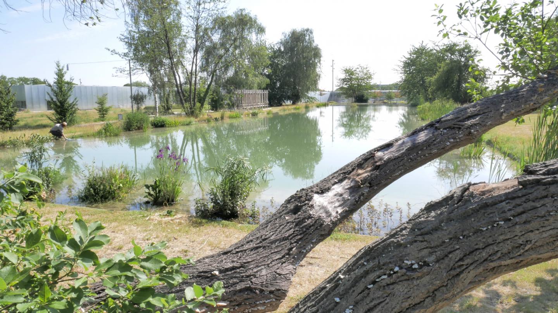 Plan d'eau du parc © S. Roynette / Lens-Liévin Tourisme