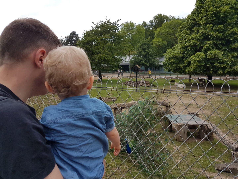 Parc des Cytises en famille